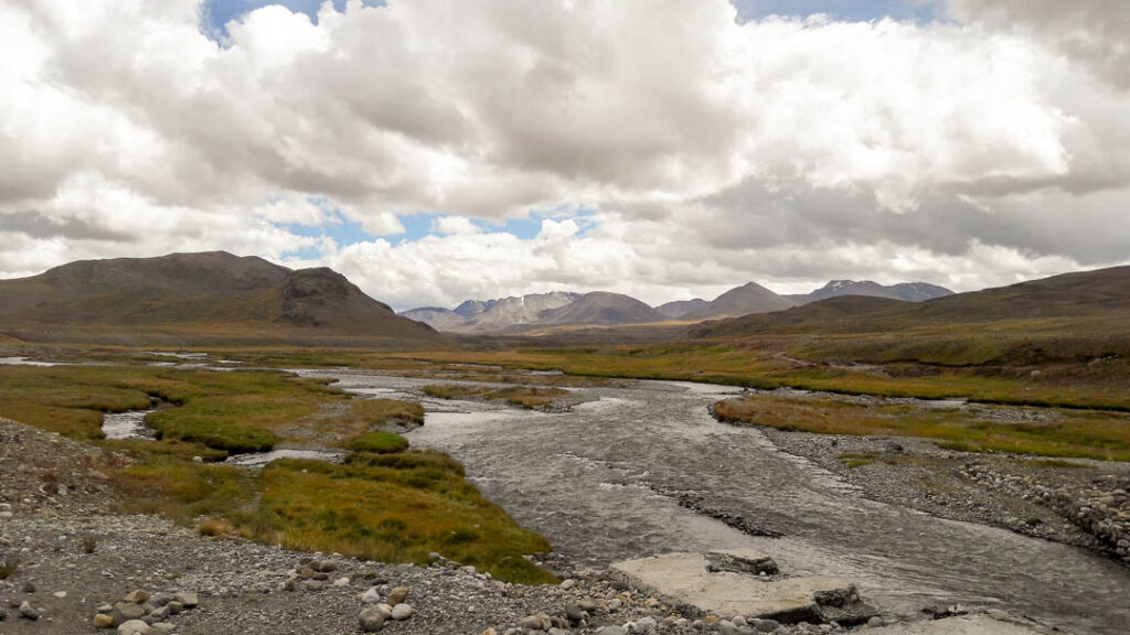 Streams at Deosai Plains