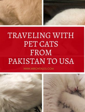 Travelling with pet cats from Pakistan to USA via Turkish Airways. Includes details on airline approval, pet travel documents and pet travel accessories.